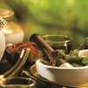 Ayurvedic Treatment Tour in India