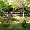 【京都】建仁寺 新緑の方丈庭園 2021.4.5