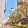 大阪瞑想セミナーを開催しました