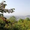 天王山(270m)・・・京都府大山崎町