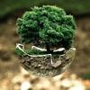 環境先進国デンマークの「持続可能な」リサイクル