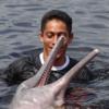 【写真集】アマゾン川でピンクイルカと一緒に泳ぐ!目が小さくて怖いけど本当はかわいい甘えん坊【ブラジル旅行記】【マナウス編】