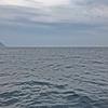 日本海でイカメタル&イサキゲームを楽しんできました~❗ 【 6月の旬魚を求めた山陰遊び🎵 】