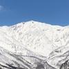 白馬岩岳 3月25日レポート スノボ客より多い観光客のお目当ては、マウンテンハーバーからの北アルプス。