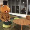 VoD界隈で働いていた私が、なぜデジタル動画の会社へ移ったか?