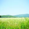 北海道車中泊の旅日記・02 絶景、また絶景