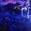 由志園のライトアップとイルミネーション⑭:島根県松江市