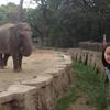 動物園は疲れるからイヤ!