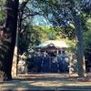 一日一撮 vol.550 青梅神社に向かい、久々の獅子狛さんアップ