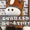 【京都新聞杯】今年もこのレースから日本ダービーの勝ち馬でるか?[予想]