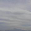 手漕ぎボートで真鯛釣り in 静岡西伊豆【釣果報告】