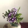 紫のバーベナの花言葉