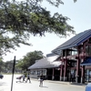 シカゴの貴重な日本食スーパー、Mitsuwaをご紹介![シカゴ留学生活]