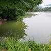 赤石池(福岡県糟屋)