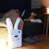 寒い夜も、心地よく眠りにつくために。ふとん乾燥機で、ほかほか生活。