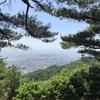 六甲山の七兵衛峠は休憩スポット、見晴らし良くてまったりできます