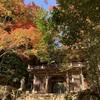 四国の風景—改めござさんライブ