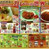 企画 メインテーマ カレーの世界 イトーヨーカドー 5月28日号