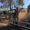大谷田南公園(足立区)ママ目線の子供の遊び場・公園情報