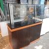 W120cmオーバーフロー水槽ご用意できます&決算セールです【ペットバルーン・大阪府・中古引き取り(回収)・中古買取・水槽】