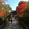京都「大谷廟」の紅葉とそば処「よしむら」から吉田山の山頂カフェ「茂庵」と鯖街道を散策