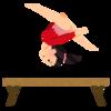 スベトラーナ・ボギンスカヤという女子体操選手を忘れない