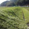 続、草刈り