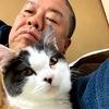 室内猫の没っちゃん(スコティッシュフォールド♀5ヵ月)の古民家内24時間フリーは中止。やんちゃ過ぎて手に負えず、申し訳ないけど別れて寝ましょう。。。