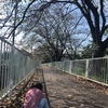 アウトレット品多数❗️吉川本社ファミリーセール🛍久しぶりの開催❣️