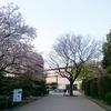 トーハク能「嵐山」@東京国立博物館 平成館