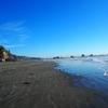 クライストチャーチ中心部からバスで20分。サムナービーチに行ってみました。ビーチはちょっと狭いかも。
