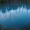 早朝の青い池と美瑛の丘の風景