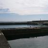 伊良部島・佐和田漁港でエギングに挑戦