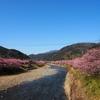 熱海・河津旅行:豊泉橋からの景色