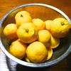 柚子ジャム