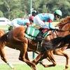 指名馬情報:牝馬第10位