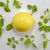 鑑定士で勉強したレモン市場について考えてみる