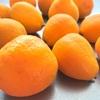 簡単☆金柑のはちみつ漬け。美味しい甘酸っぱさで風邪予防にも!
