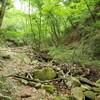 裏六甲 小川谷から最高峰、下りは七曲りから森林管理道経由で住吉道へ