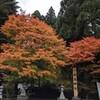 白鳥神社(宮崎県えびの市)