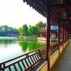 【上海】西塘の水郷と豫園♡
