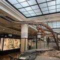 「フタバサウルス・スズキイ」 日本初の首長竜化石発見の物語