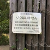 天王寺動物園で象とコラボレートしようとした結果。