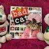 bad cat カレンダー!!