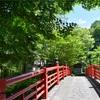 青紅葉がきれいな修善寺に行ってきた