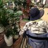 97歳の母の買い物に付き合う