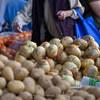 Aero 048  a pile of onions