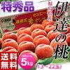 《送料無料》福島産 伊達の桃 《特秀品》 13~22玉 約5kg
