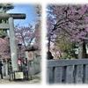 上野恩賜公園『五條天神社と花園稲荷神社』