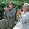 『ラヴェンダーの咲く庭で』(2004年・イギリス)